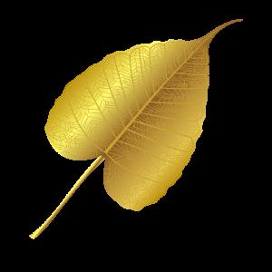 Bo-leaf